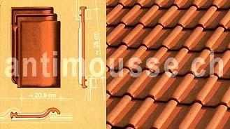 types de tuiles c p vuilleumier 079 214 29 29 fax 021 881 61 71. Black Bedroom Furniture Sets. Home Design Ideas